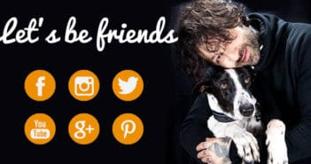 social_media_marketing_pet_shop_ukkia