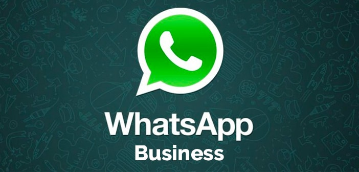WhatsApp per il tuo Business